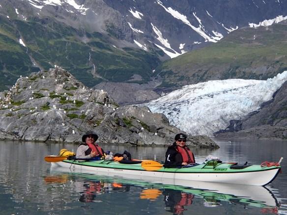 Black-Legged Kittiwake rookery at Shoup Glacier
