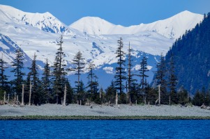 Chugach Mountains beyond Columbia Bay