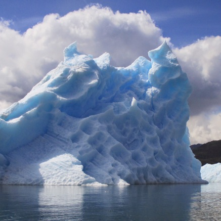 Iceberg in Columbia Bay