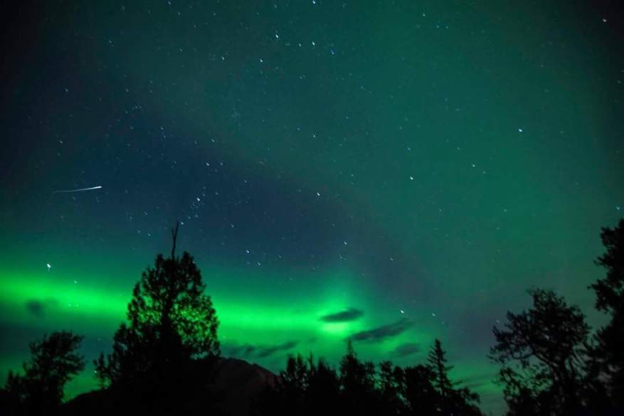 Aurora Borealis lights up the night sky with magic