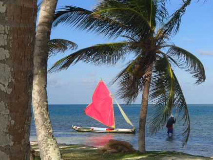 Brightly-colored Guna sailboat
