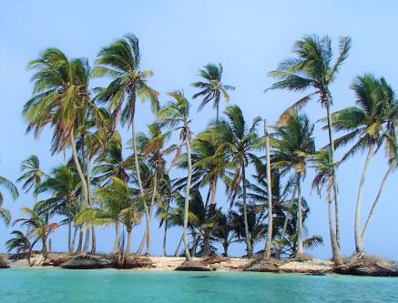 Paradise straight ahead!
