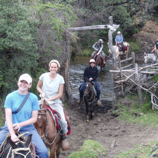 Each horse came from a different family for our horseback riding adventure, Ecuador, 2004