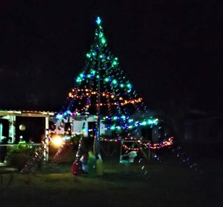 Xmas by night, Isla Tigre