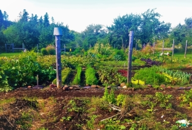 Community garden, Copper Harbor